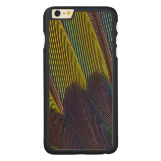 Jenday Conure Feather Detail Carved Maple iPhone 6 Plus Case