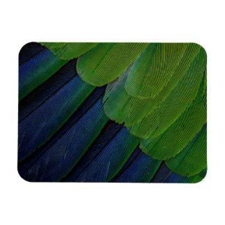 Jenday Conure feathers Rectangular Photo Magnet