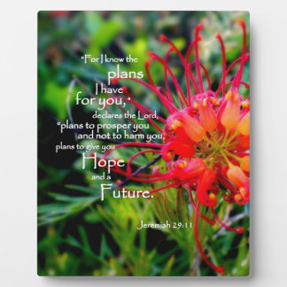 Jeremiah 29:11 A Hope and a Future Display Plaques