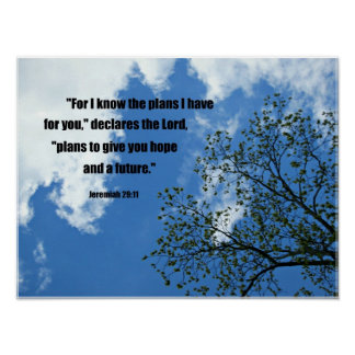Jeremiah 29:11 For I know the plans I have for you Poster