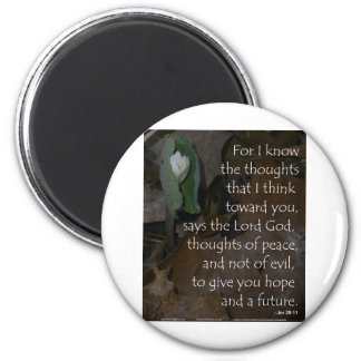 Jeremiah 29:11 hope for the future magnets