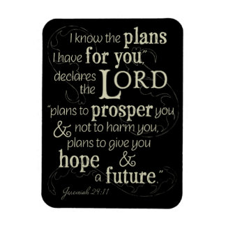 Jeremiah 29:11 I know the plans I have for you... Magnet