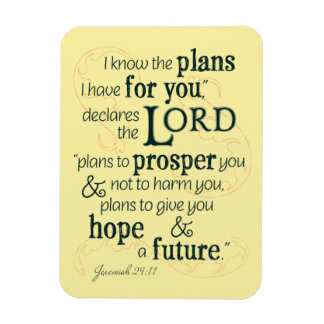 Jeremiah 29:11 I know the plans I have for you... Rectangular Photo Magnet