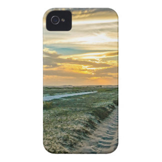 Jericoacoara National Park Dunes Road iPhone 4 Case-Mate Cases
