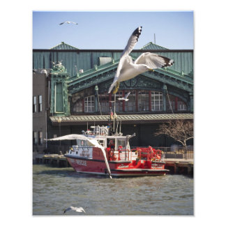 Jersey City Fireboat with Sea Gulls Photographic Print