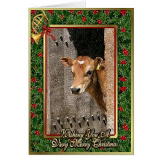 Jersey Dairy Calf Blank Christmas Card