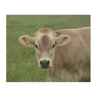 Jersey Milk Cow Portrait Wood Canvases