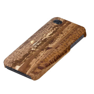 Jerusalem of Gold IPhone Case iPhone 4 Cover