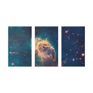 Jet in Carina Wrapped Canvas