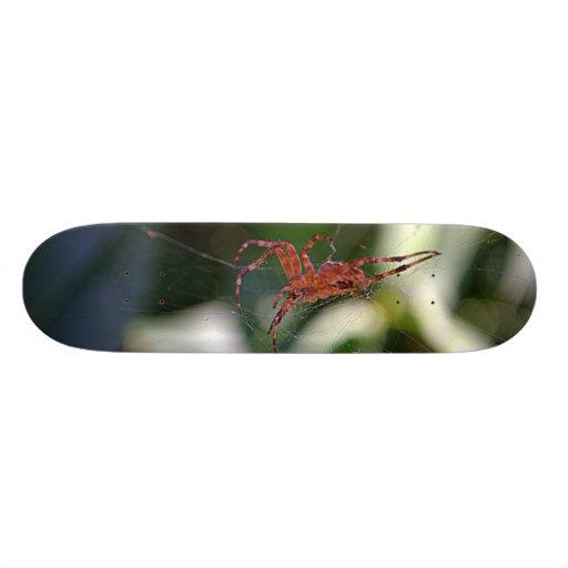 jewel in the web skateboard