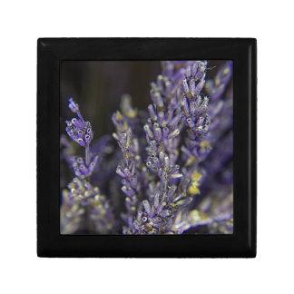 JEWELER Lavender Gift Box