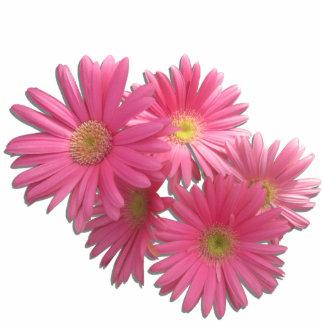 Jewelry - Pin - Dark Pink Gerbera Daisies L/F Photo Sculptures