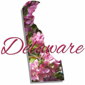 Jewelry - Pin - DELAWARE Photo Sculpture Badge