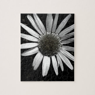 jigsaw puzzle daisy black and white  photo art