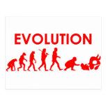 Jiu Jitsu Evolution