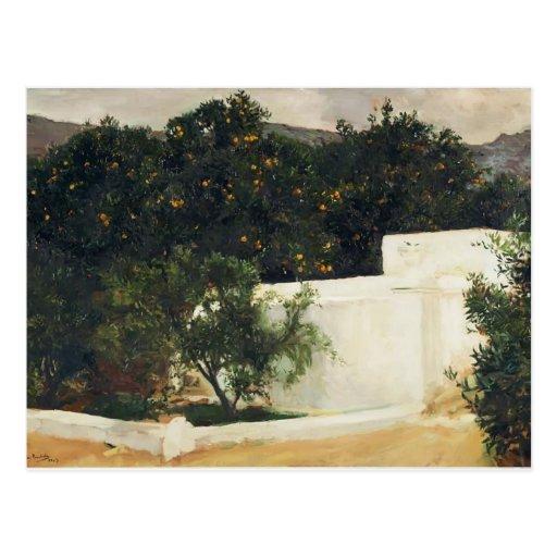 Joaquín Sorolla- Orange trees on road to Seville Post Cards