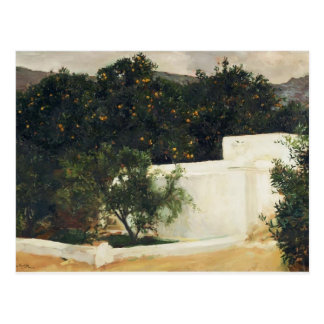Joaquín Sorolla- Orange trees on road to Seville Postcard
