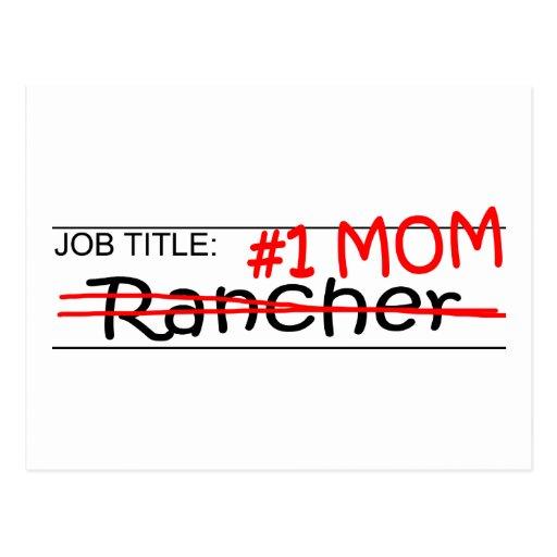 Job Mom Rancher Postcard