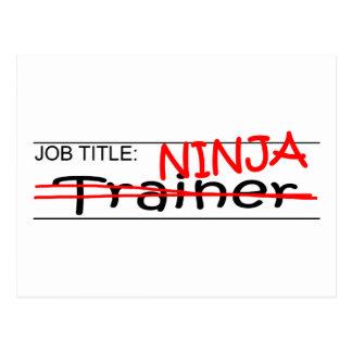 Job Title Ninja - Trainer Postcard