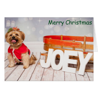Joey going Christmas Shopping Card