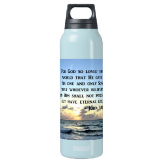 JOHN 3:16 BLUE SKIES SCRIPTURE PHOTO INSULATED WATER BOTTLE