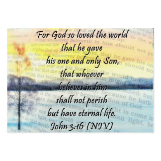 John 3:16 sharing Card Pack Of Chubby Business Cards