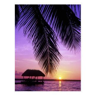 John Pennekamp State Park, Florida Keys, Key Postcard