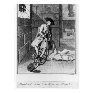 John Sheppard Postcard