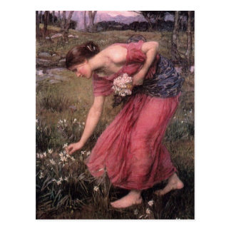 John William Waterhouse - Narcissus - Fine Art Postcard