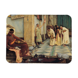John William Waterhouse - The Favourites... Rectangular Photo Magnet
