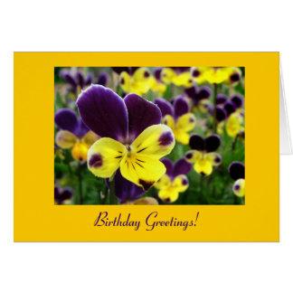 Johnny Jump Up Birthday Card