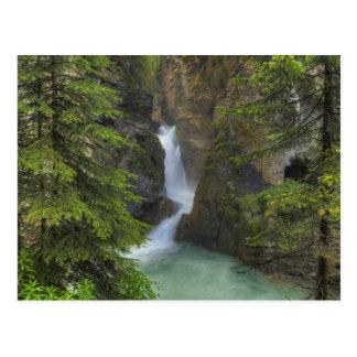 Johnston Canyon Postcard