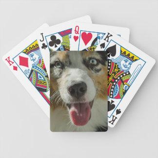 Joker Boy Bicycle Playing Cards