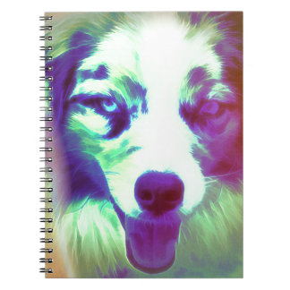 Joker Notebooks