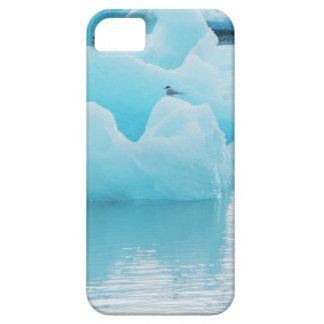 Jökulsárlón terns barely there iPhone 5 case