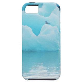 Jökulsárlón terns tough iPhone 5 case