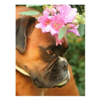 Jolie flower girl postcard