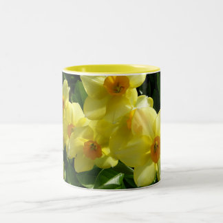 Jonquils/Daffodils/Narcissus Two-Tone Coffee Mug