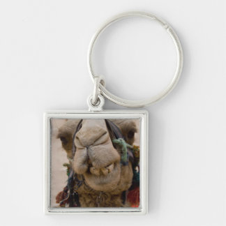 Jordan, Ancient Nabataean city of Petra. Local Silver-Colored Square Key Ring