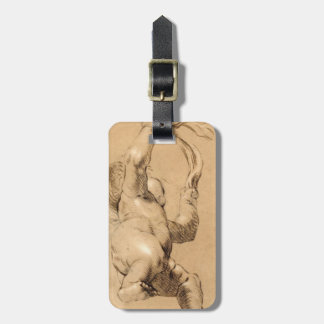 Joshua Reynolds Sketch of Putto Holding a Sash Luggage Tag