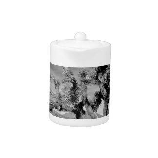 Joshua Tree (black & white)