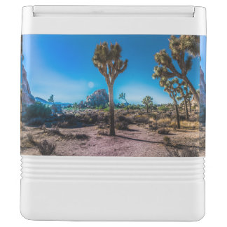 Joshua Tree National Park California Cooler