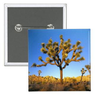 Joshua Tree National Park California USA Pin