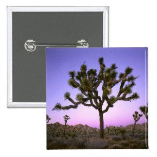 JOSHUA TREE NATIONAL PARK CALIFORNIA USA PINS