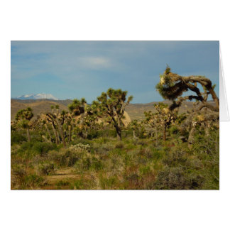 Joshua Tree National Park Desert Landscape Greeting Card