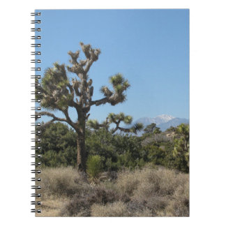 Joshua Tree National Park Spiral Note Book