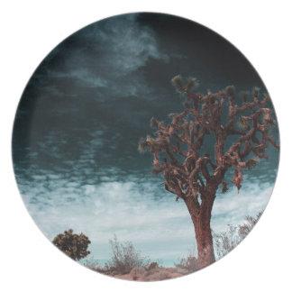 Joshua Tree Special Plates