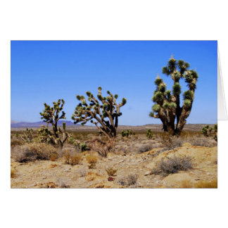 Joshua Trees, Mojave Desert, Greeting Card