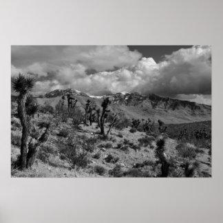 Joshua Trees with Snowy Peaks, Mojave Desert UT Poster