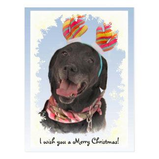Joyful Black Labrador Retriever Christmas Postcard